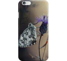 Garden Stories XII iPhone Case/Skin