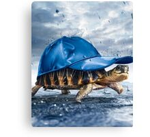 Cool Turtle Canvas Print
