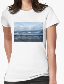 Storm is Coming - Turbulent Sky and Yachts Womens Fitted T-Shirt