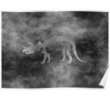 Triceratops Skeleton Grunge style Poster