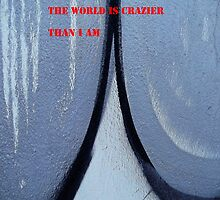 Message 17 - THE WORLD IS CRAZIER THAN I AM by Tony Broadbent