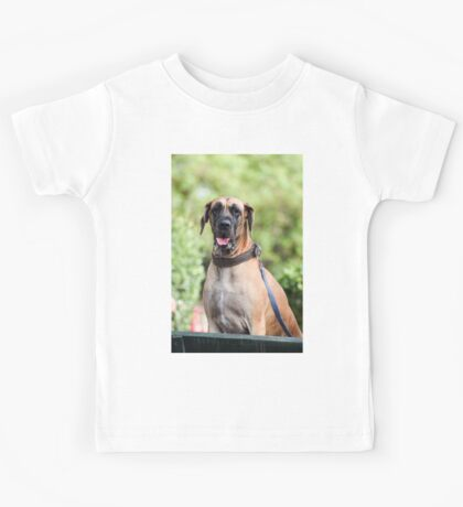 Portrait of a Great Dane at a dog show  Kids Tee