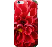 The red pompon dahlia iPhone Case/Skin