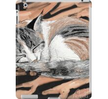 Sleeping Cat - 2012 iPad Case/Skin