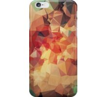 Polygonal Abstraction  iPhone Case/Skin