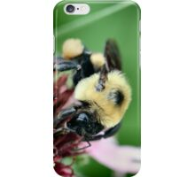 Busy Buzzy iPhone Case/Skin