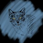 Expressive Cat Sketch on Blue Scribble  by ibadishi