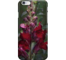 Red Rocket Snapdragon iPhone Case/Skin