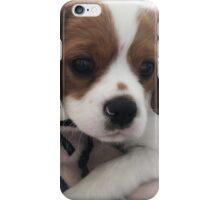 Linen Playful Puppy iPhone Case/Skin