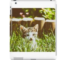 Baby Cat Playing In Grass iPad Case/Skin