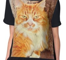 Garfield From Castle Cary Chiffon Top