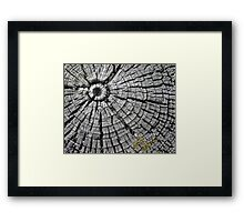 Aged by the Elements Over Time Framed Print