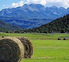 Hay At Ridgeway by Gary Benson