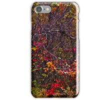 Autumn Abstract iPhone Case/Skin
