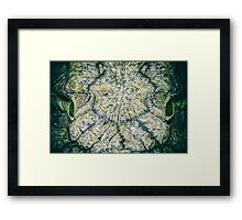 Wild Nile Crocodile Framed Print
