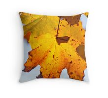 Autumn Is Ready To Fall Throw Pillow