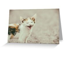 Cute Cat Meowing With A Funny Laughing Face Greeting Card
