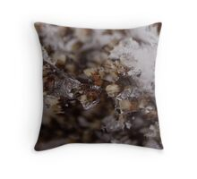Snow Crystals Captures Ghost Throw Pillow