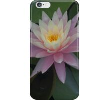 Pink Passion  iPhone Case/Skin