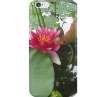 Reflection Pond iPhone Case/Skin