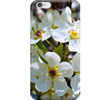 Beautiful blossoms iPhone Case/Skin