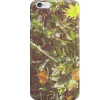 Little summer yellow flowers iPhone Case/Skin