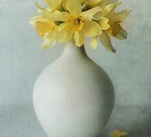 Daffodils in a white flowerpot by JBlaminsky