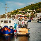 Petty Harbour Newfoundland by Yukondick