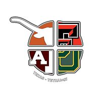 Texas College Sports TETRAlogy! Texas Longhorns, Baylor Bears, Texas A&M and Texas Tech by SplitDecision