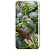 Abstract In Nature iPhone Case/Skin