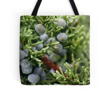 Abstract In Nature Tote Bag
