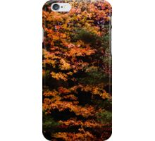Autumn Abstract Design iPhone Case/Skin