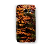Autumn Abstract Design Samsung Galaxy Case/Skin