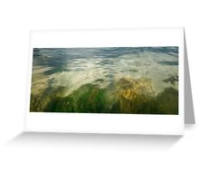 Underwater 3 Greeting Card