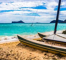 Catamaran on the Beach 1 by Leigh Anne Meeks