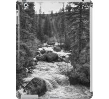 The River iPad Case/Skin