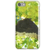 Mourning Cloak on Linden Blossoms iPhone Case/Skin