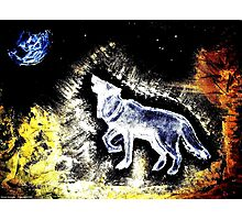 Wolf Spirit Beautiful Photographic Print