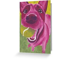 pink blue heeler Greeting Card