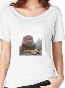 Young Lion male - photo gifts and apparel for big cat lovers - unique photo gifts from mmersdesign Women's Relaxed Fit T-Shirt