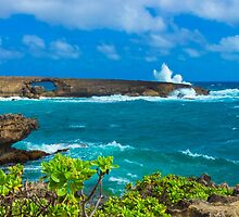 Laie Sea Arch by Leigh Anne Meeks