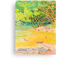 Creek Mouth, Port Douglas Canvas Print