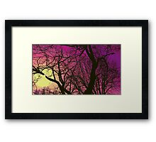 To See What It's All About Framed Print
