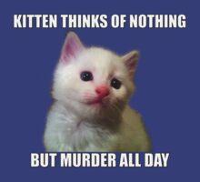 Kitten thinks of nothing but murder all day by Kiritora