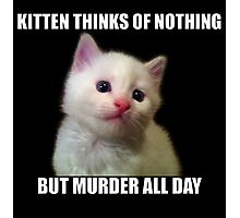 Kitten thinks of nothing but murder all day Photographic Print