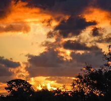 Warrandyte Sunset II by Adam Le Good