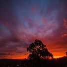 Warrandyte Sunset VI by Adam Le Good