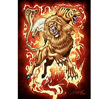 Fantasy Creature: Lion, Eagle, Tiger and Snake Photographic Print
