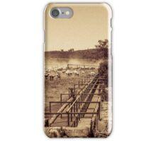 Flock Of Sheep iPhone Case/Skin