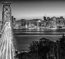 San Francisco Skyline in Black & White by Dmitry Shuster